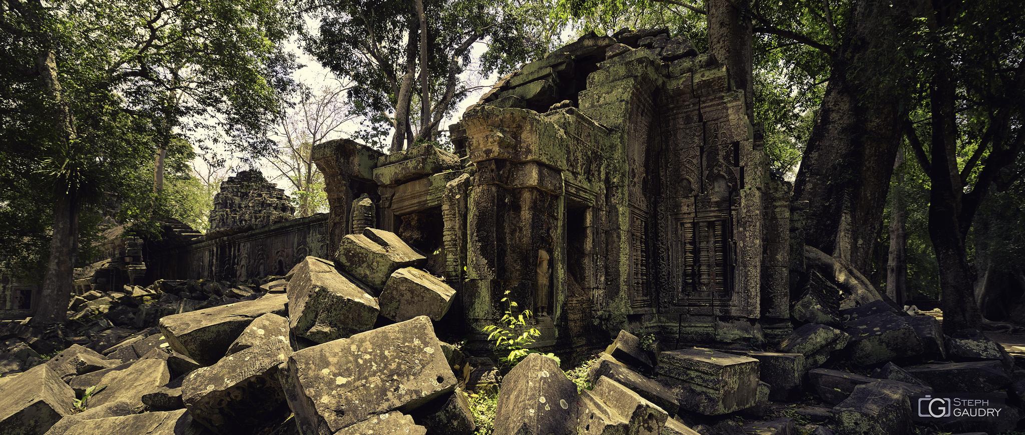 Ruines de Ta Prohm [Cliquez pour lancer le diaporama]
