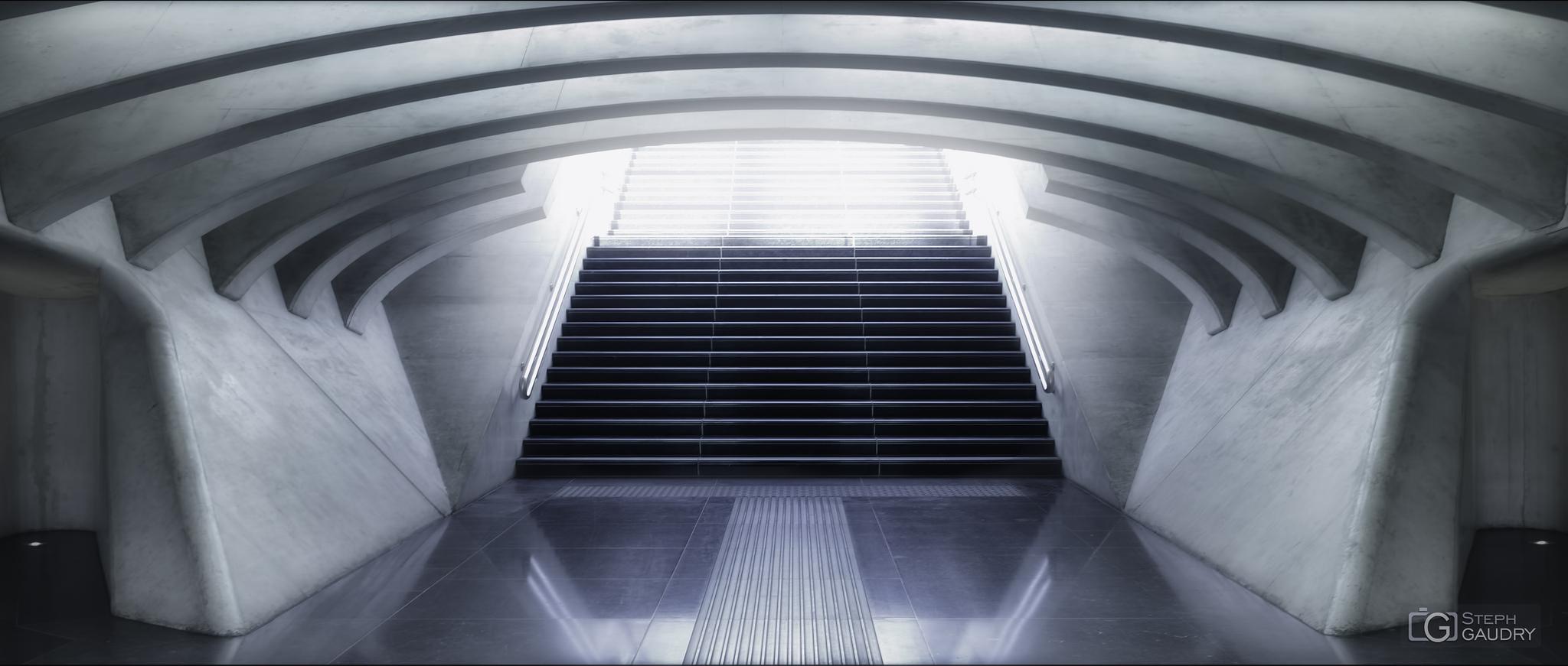Liège Guillemins - vers la lumière - c1 [Cliquez pour lancer le diaporama]