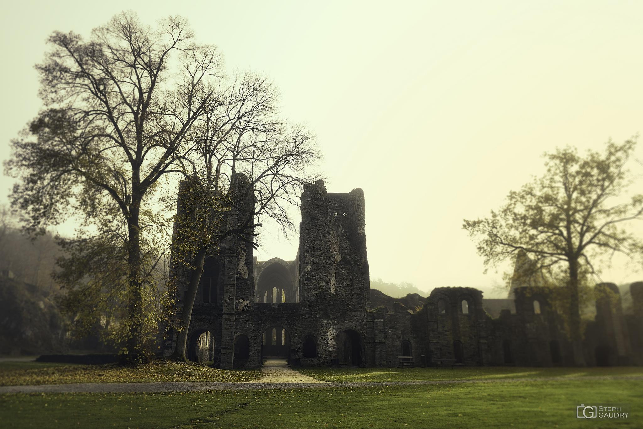 Abbaye de Villers: le porche et le cellier [Cliquez pour lancer le diaporama]
