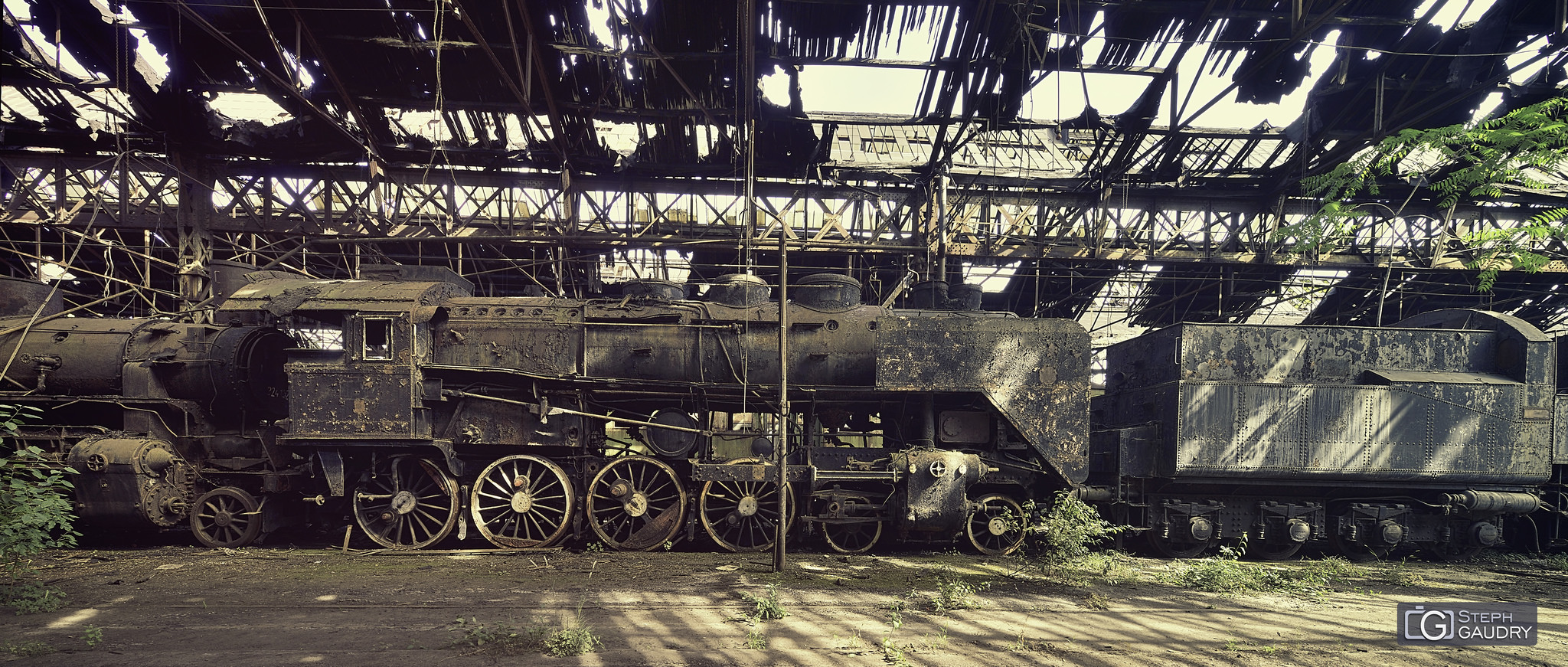 Abandoned steam train [Klik om de diavoorstelling te starten]