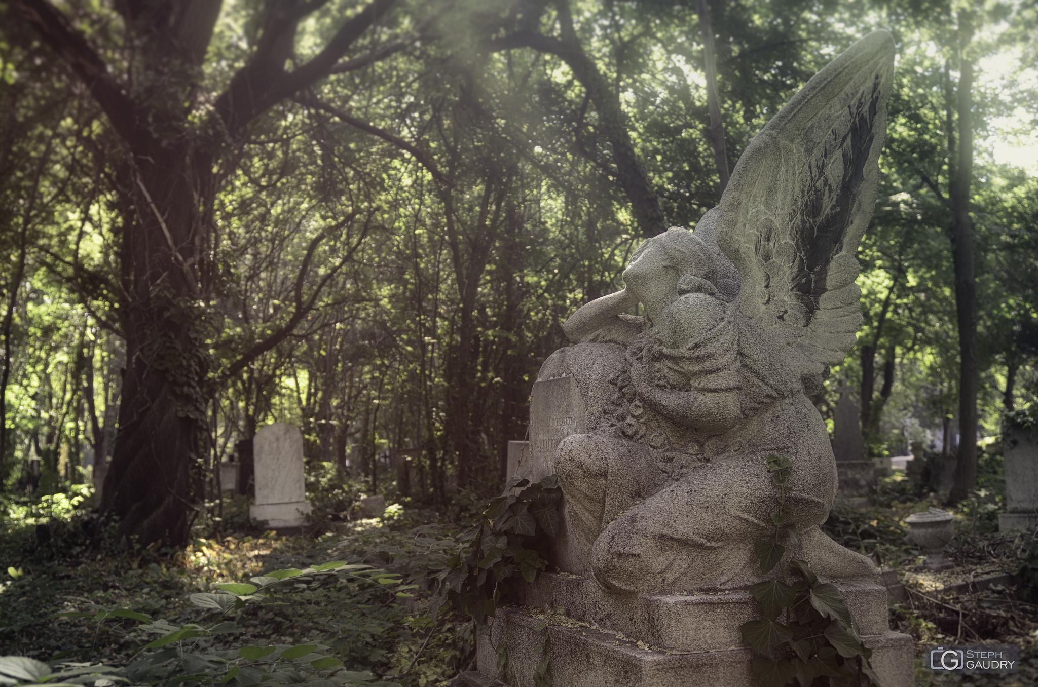 F Cemetery (HUN) - looking around the light [Klik om de diavoorstelling te starten]