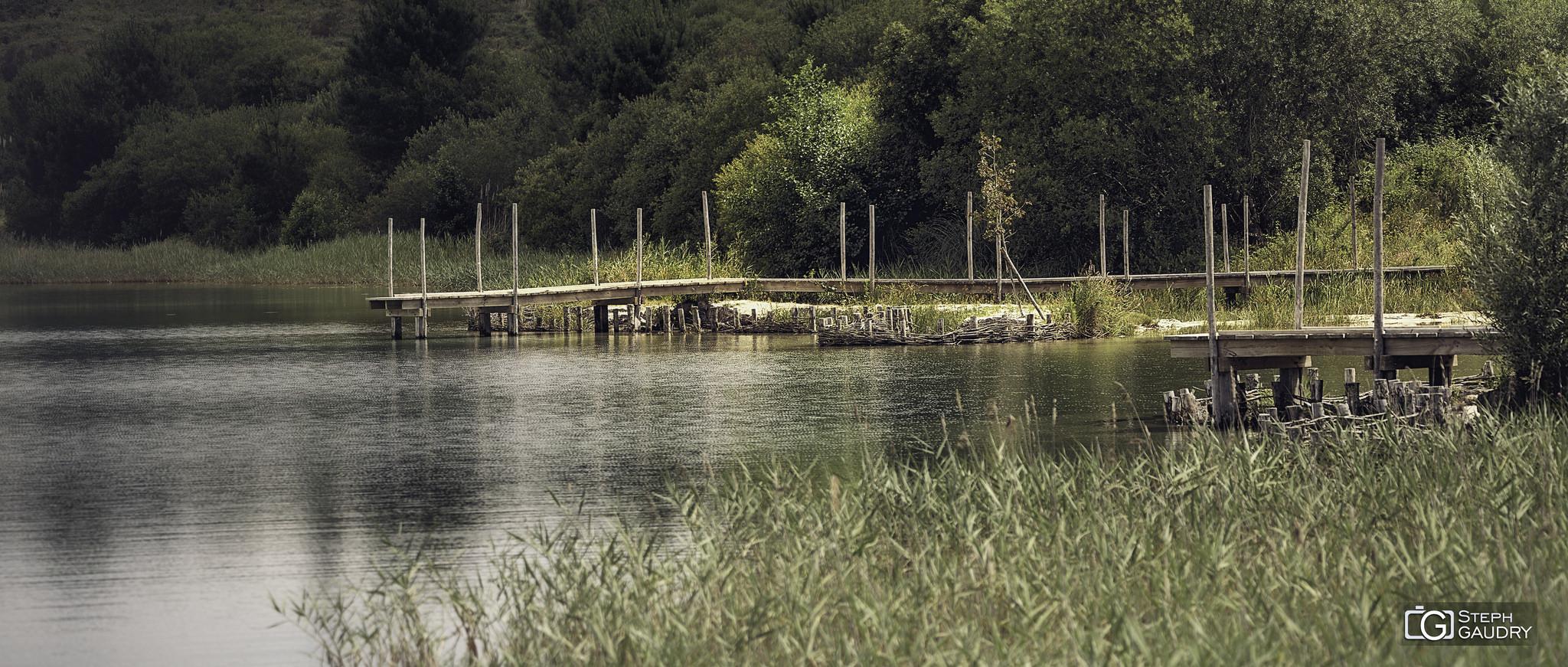 Les étangs d'Arjuzanx