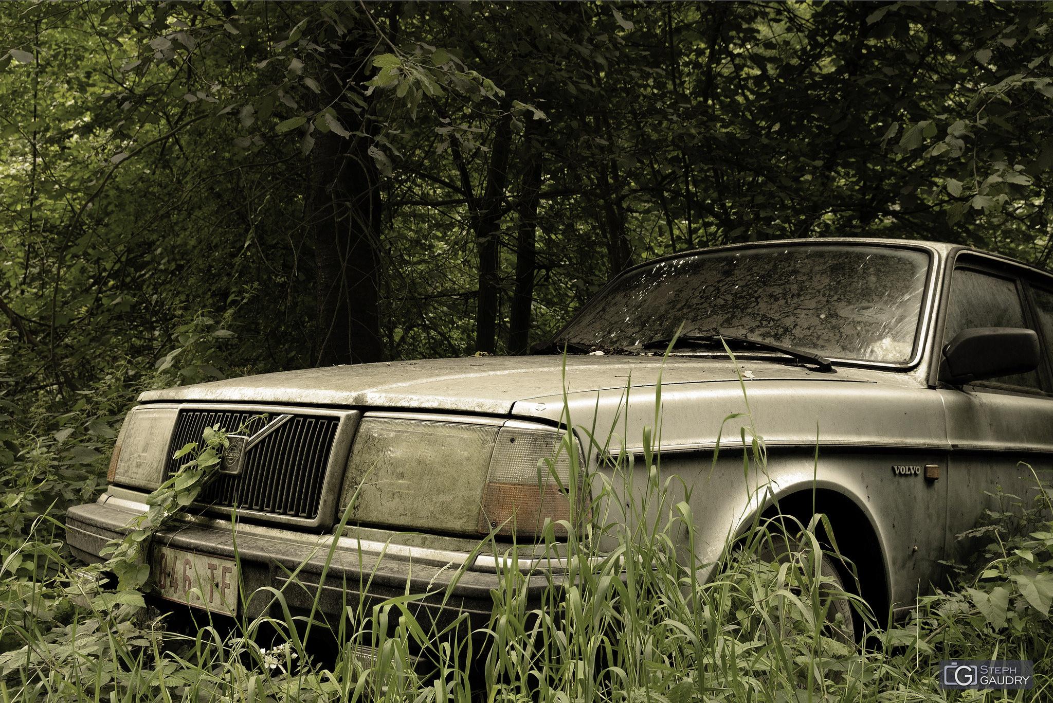 Volvo, retour à la nature [Cliquez pour lancer le diaporama]