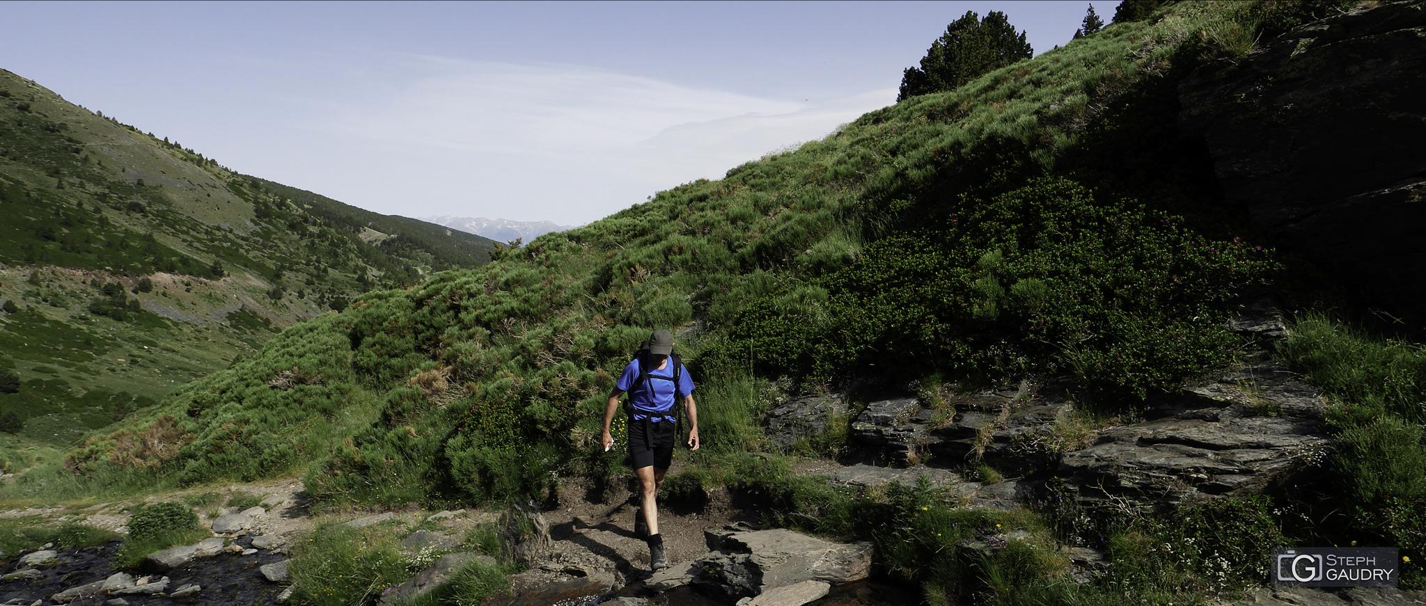 Balade du Puigmal 2015_07_04_090452 [Click to start slideshow]
