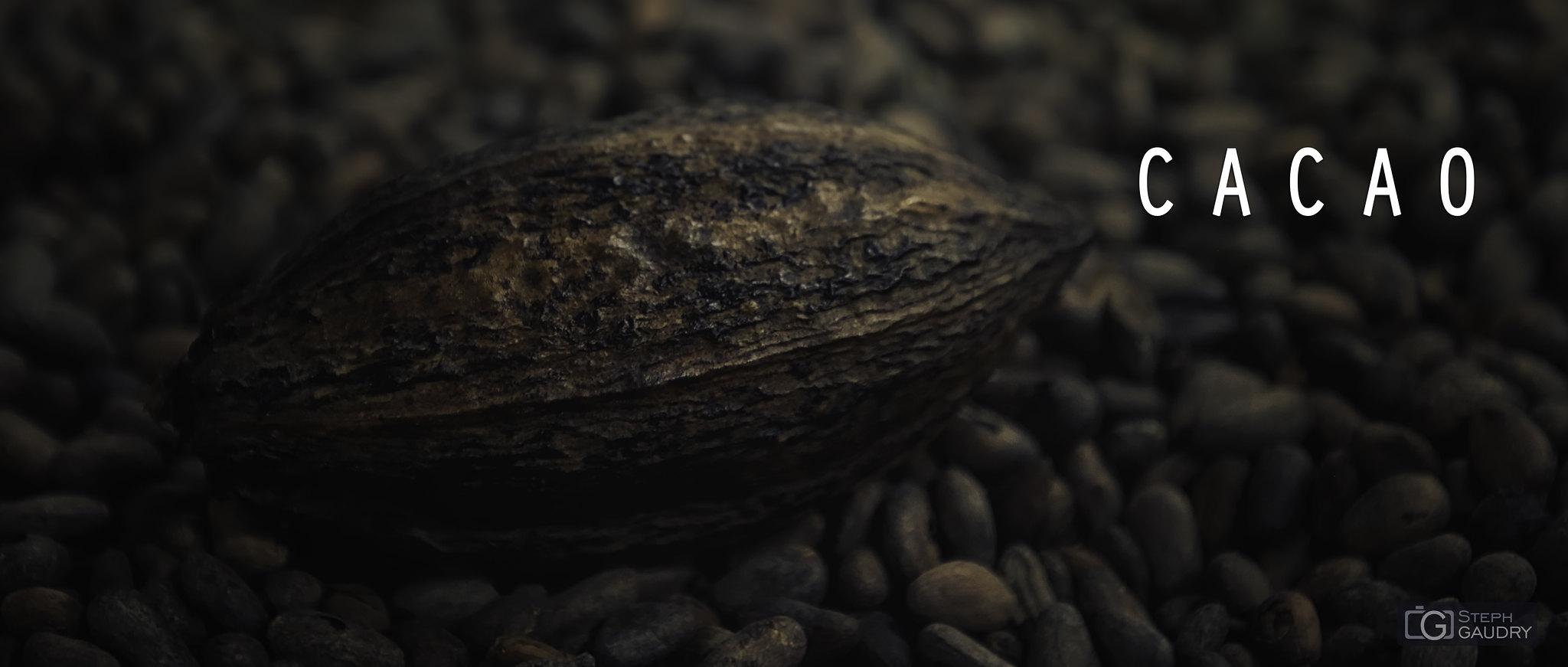 Cacao [Cliquez pour lancer le diaporama]