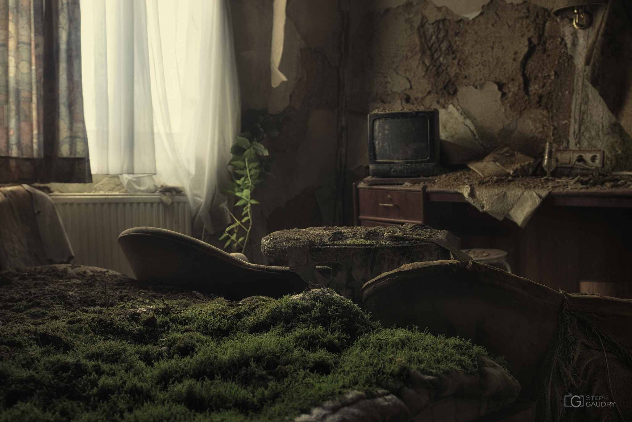 Un lit de verdure