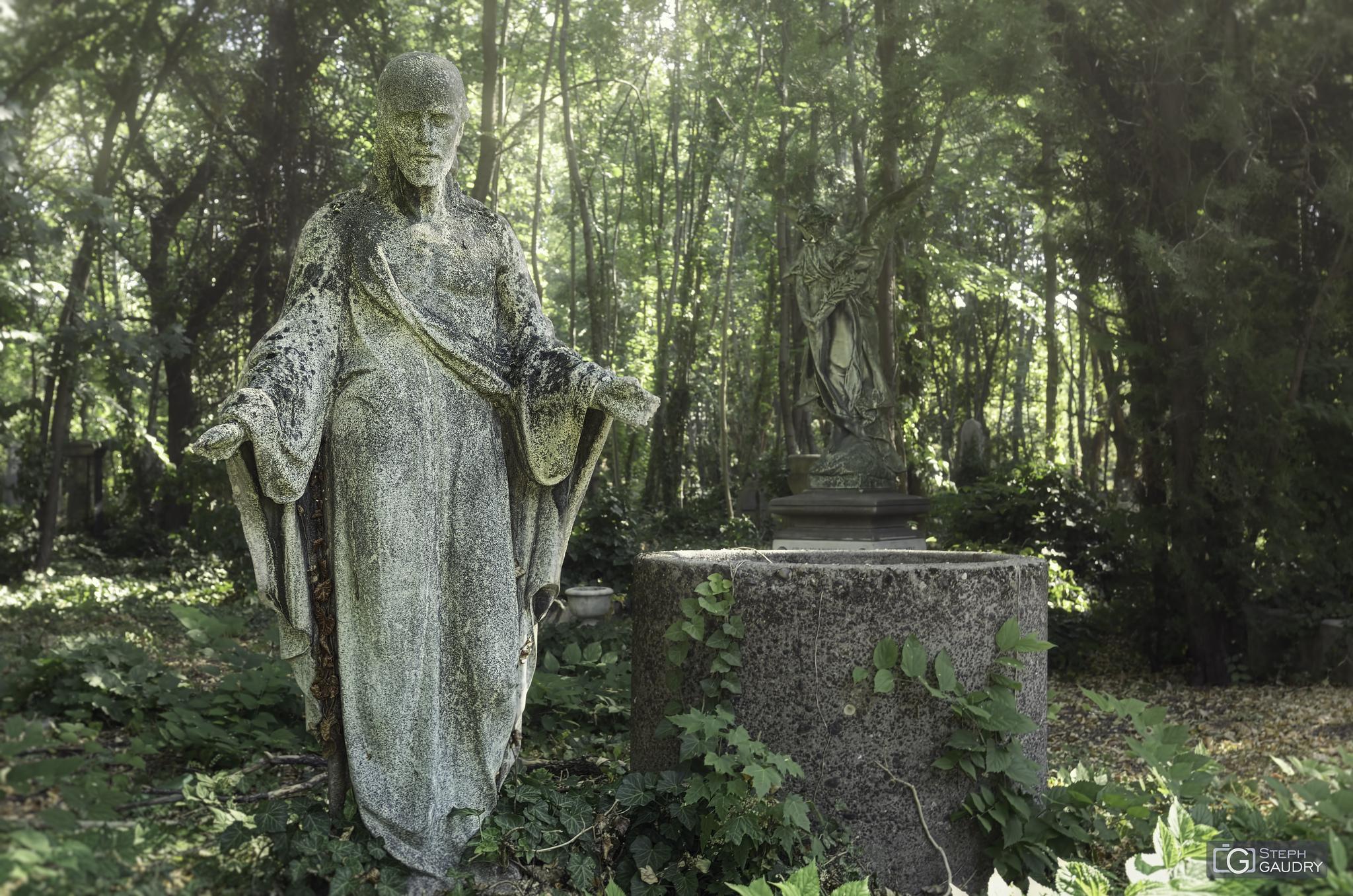 F Cemetery (HUN) [Cliquez pour lancer le diaporama]