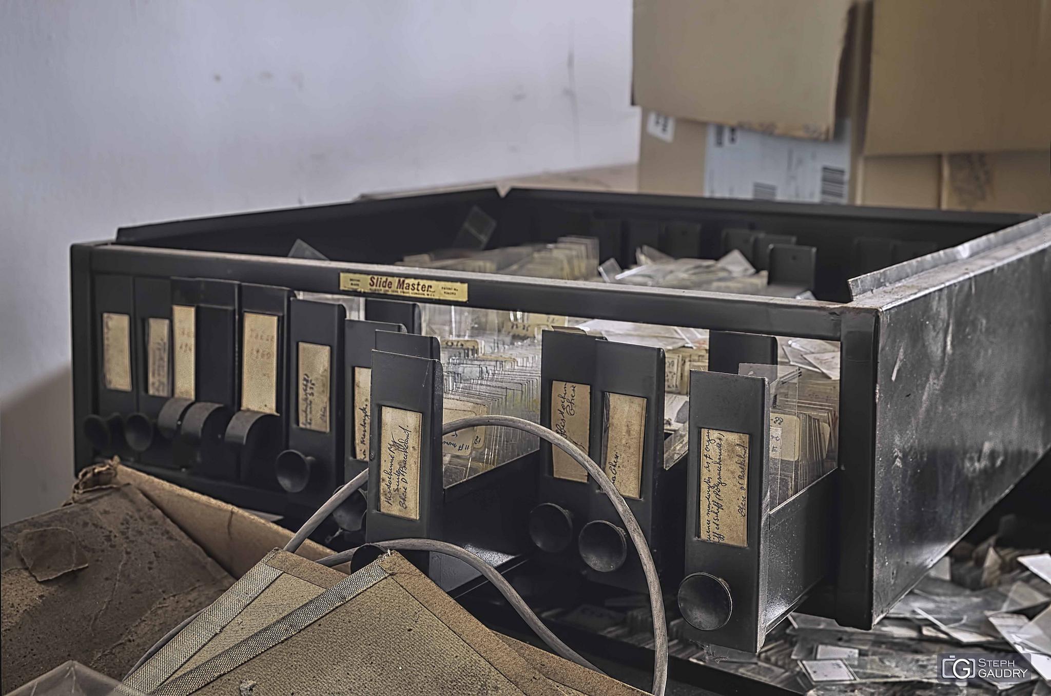 Slides boxes - samples - Histochimie [Klik om de diavoorstelling te starten]