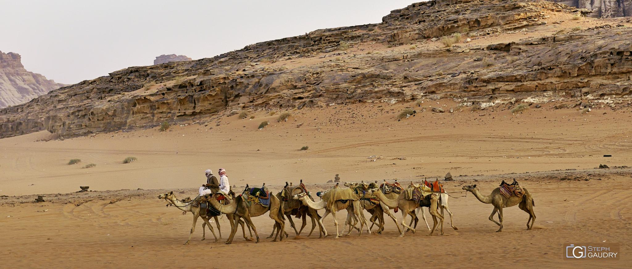 Marche en avant de toi-même, comme le chameau qui guide la caravane. [Cliquez pour lancer le diaporama]