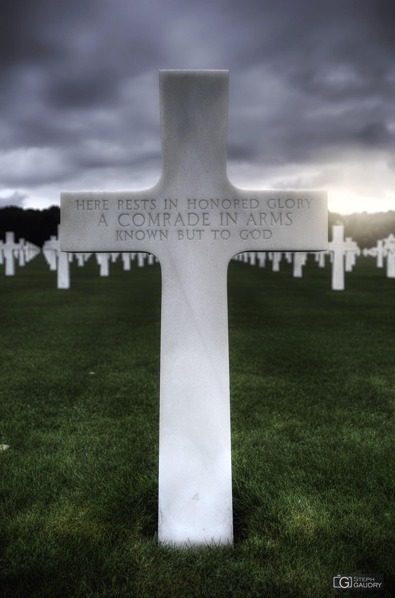 Ardennes American Cemetery - unknown [Cliquez pour lancer le diaporama]