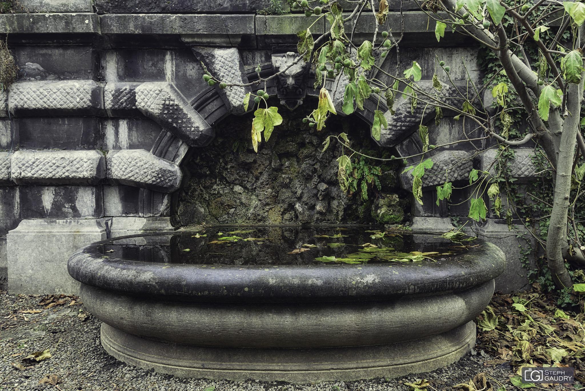 La fontaine du jardin botanique [Klik om de diavoorstelling te starten]