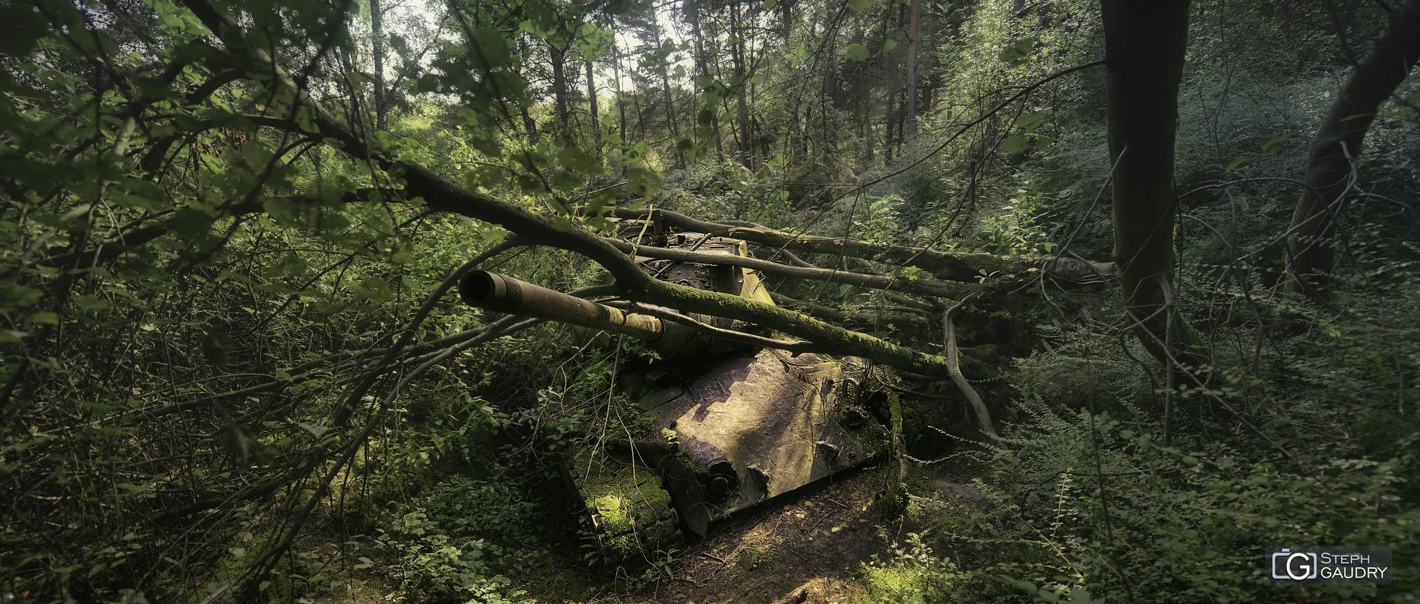 Tank abandonné dans la forêt [Click to start slideshow]