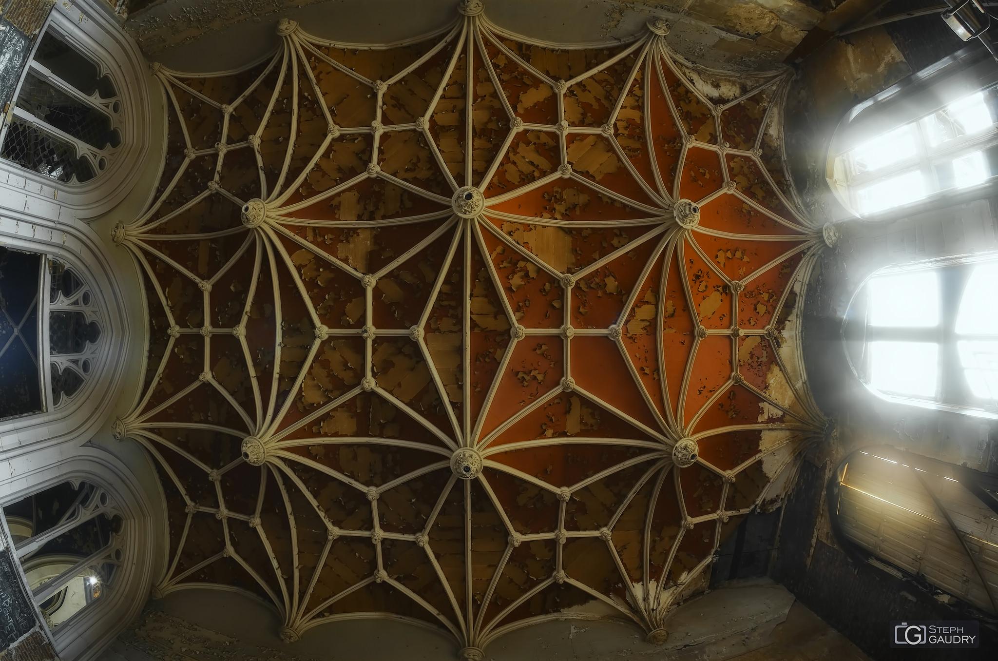 La toile d'araignée rouge [Cliquez pour lancer le diaporama]