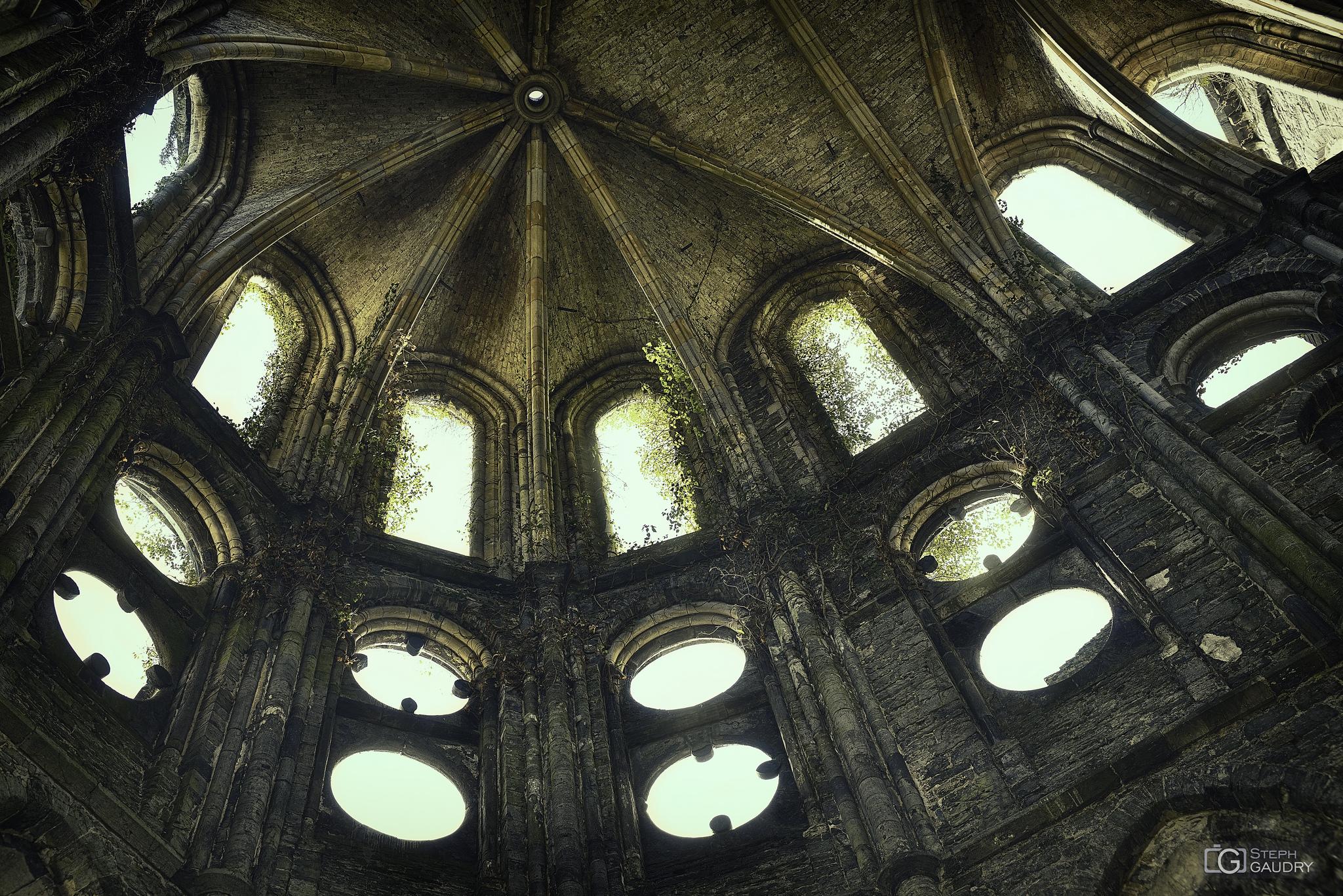 Abbaye de Villers: oculi [Klik om de diavoorstelling te starten]