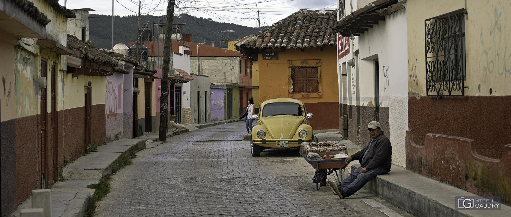 Coccinelle à San Cristobal de las Casas [Cliquez pour lancer le diaporama]