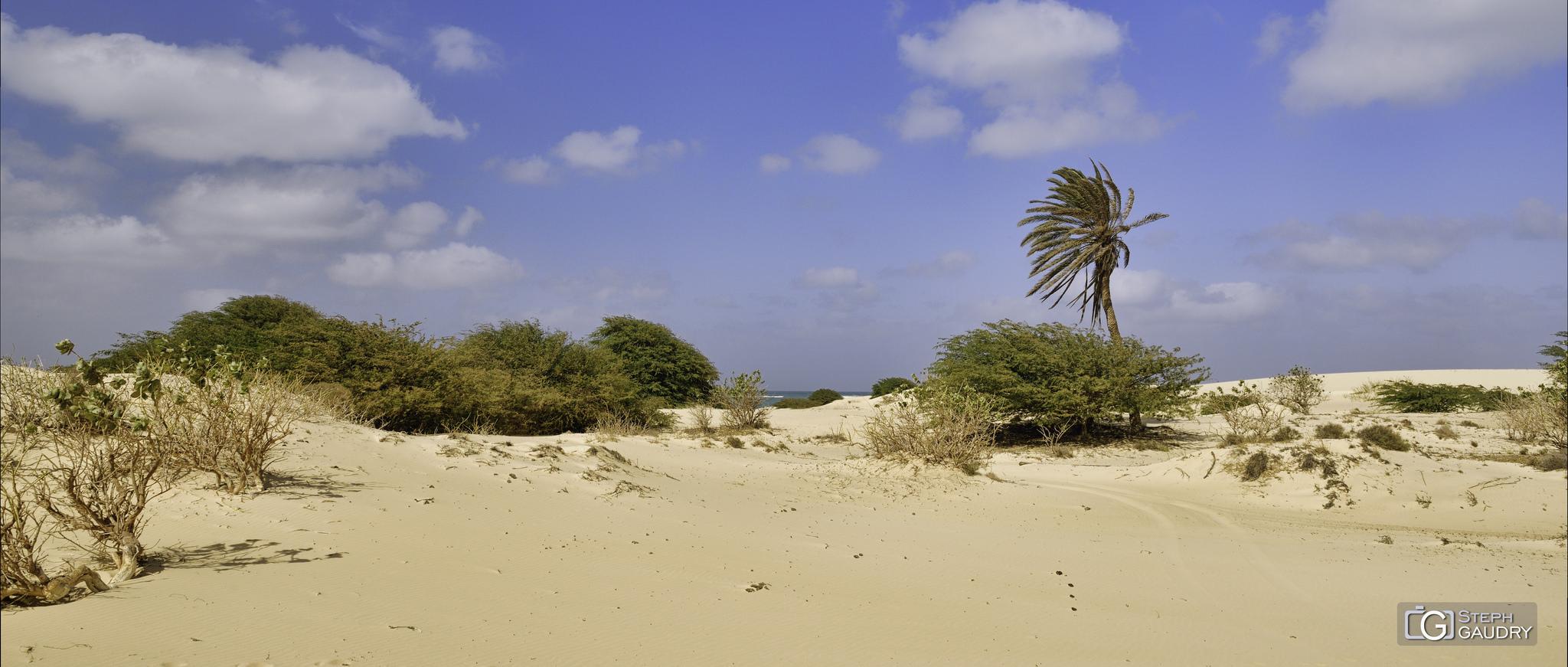 Une plage de rêve au Cap Vert [Cliquez pour lancer le diaporama]