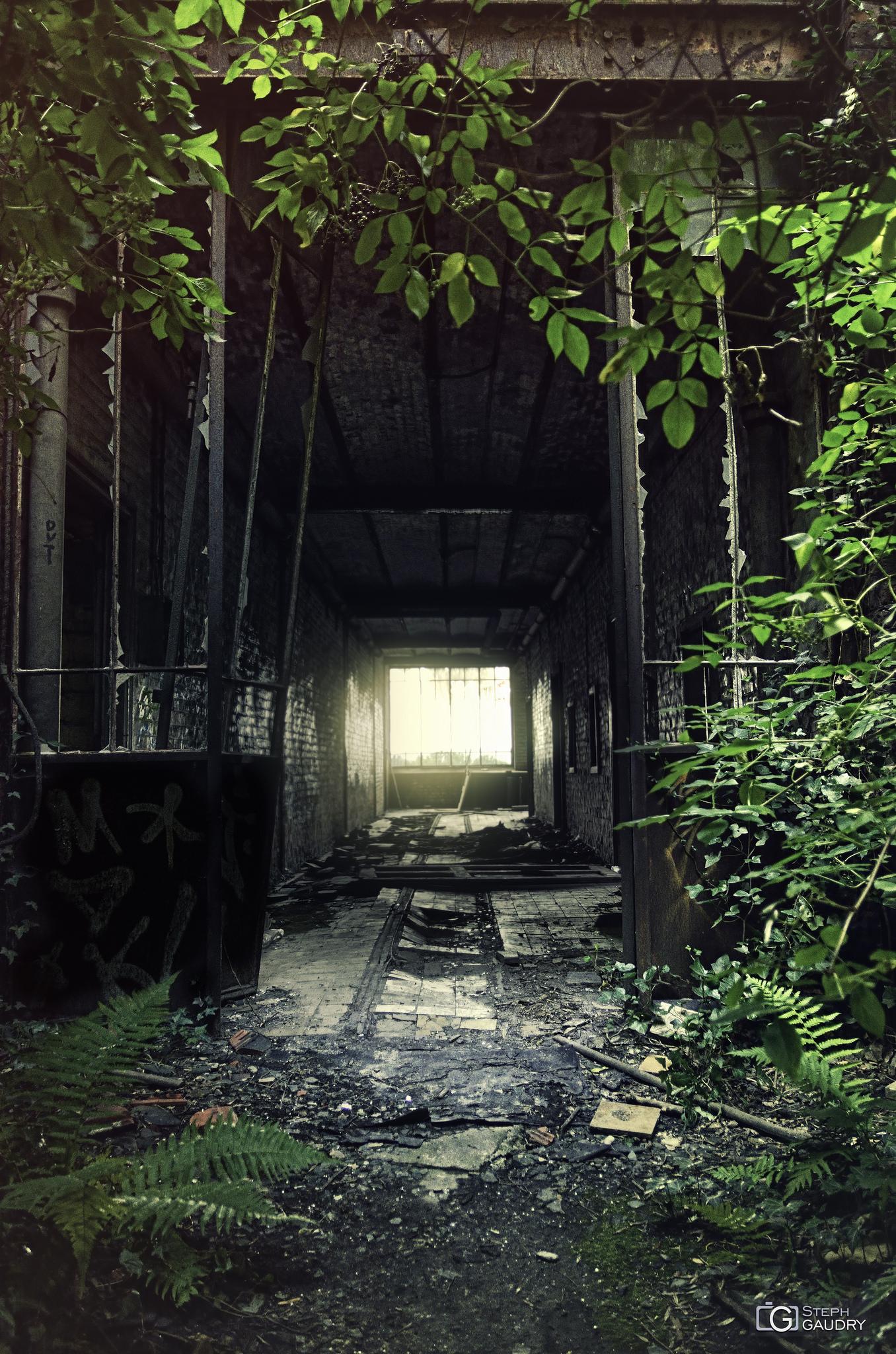 Couloir vers les douches du charbonnage [Cliquez pour lancer le diaporama]
