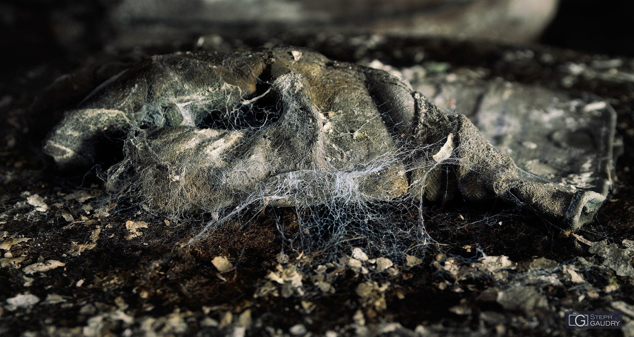 Le gant de Spiderman [Cliquez pour lancer le diaporama]