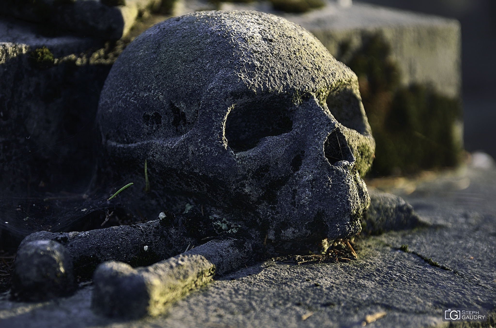 Caput-mortuum [Klik om de diavoorstelling te starten]