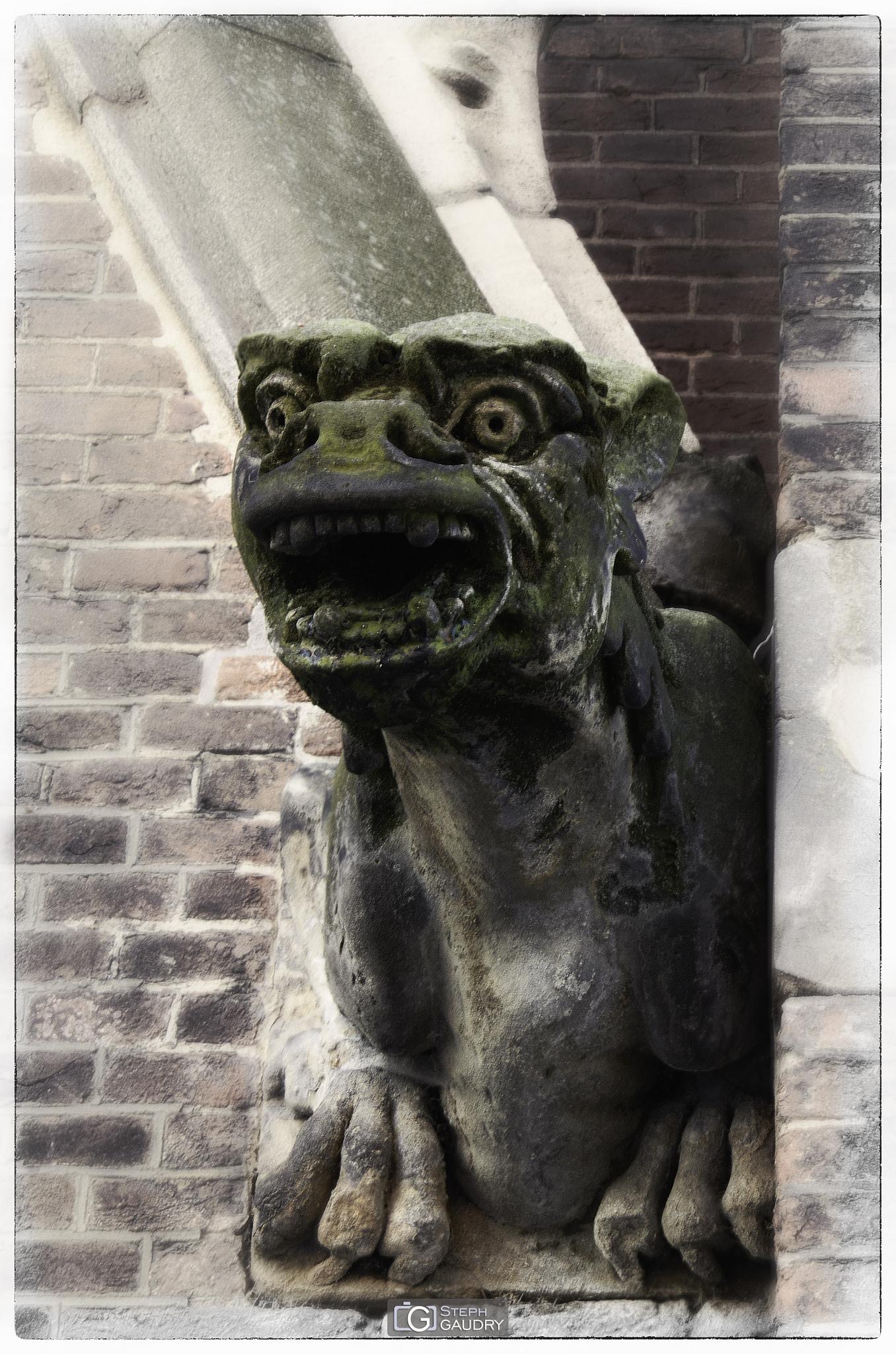 Catharinakerk  waterspuer [Klik om de diavoorstelling te starten]