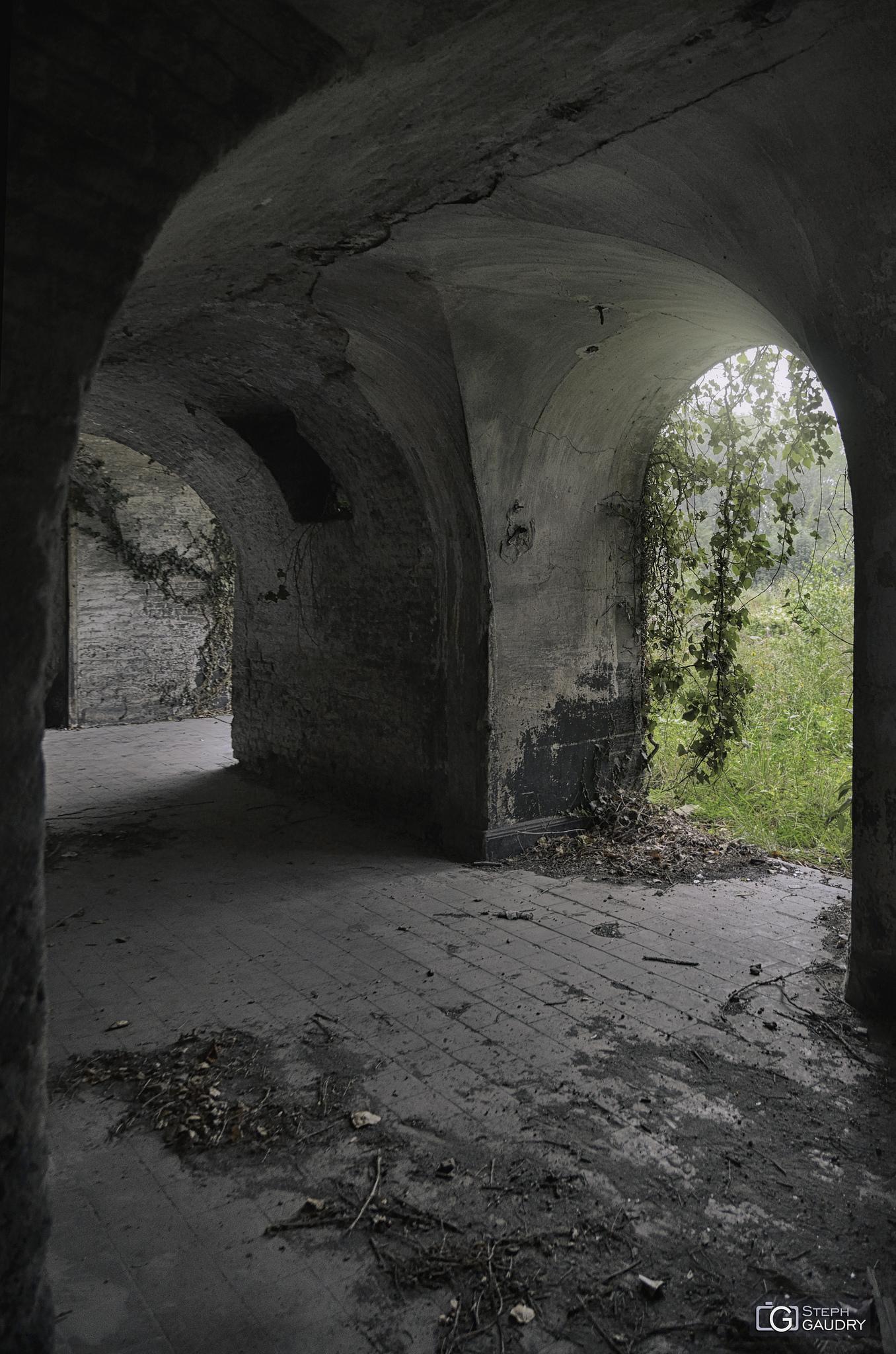 Like a cloister or a crypt [Cliquez pour lancer le diaporama]