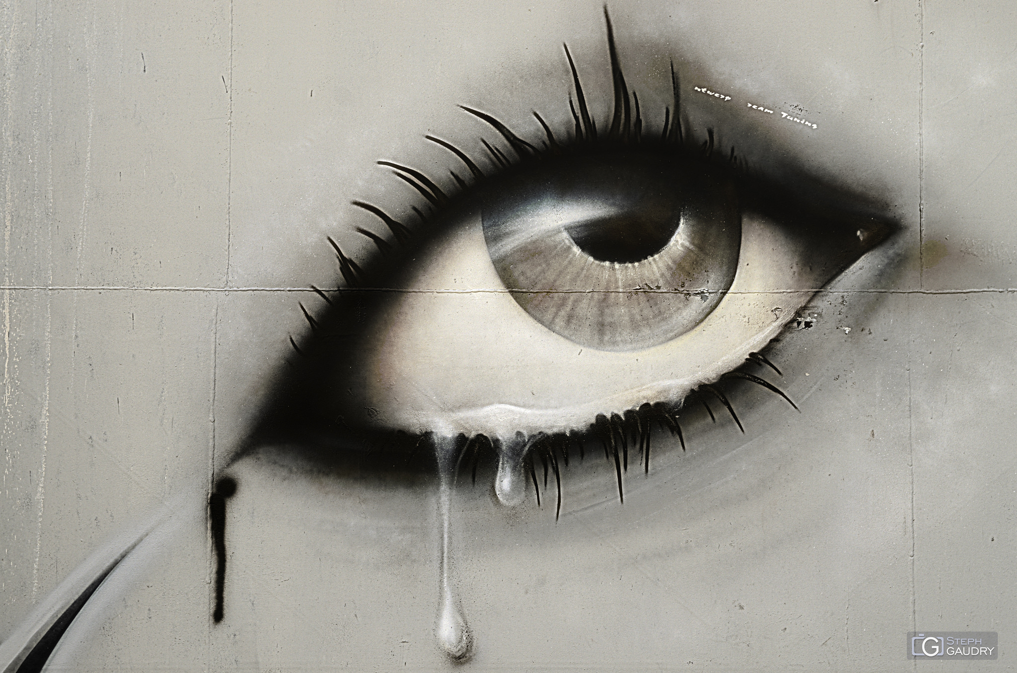 Les larmes de Doel - Gros plan [Cliquez pour lancer le diaporama]