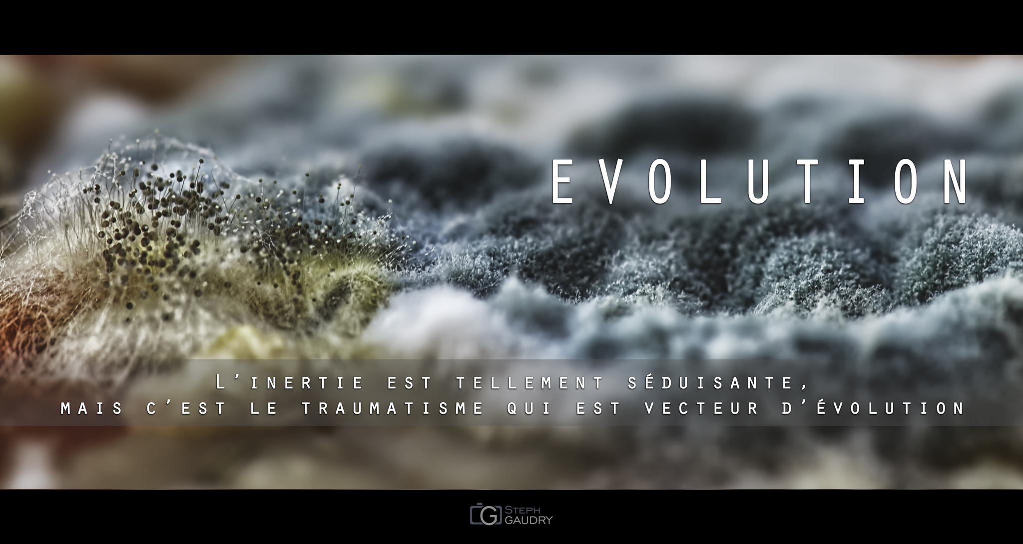 EVOLUTION [Cliquez pour lancer le diaporama]
