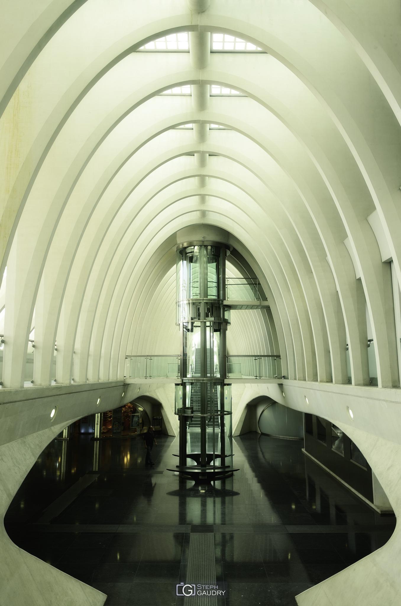 Liège Guillemins - une ossature de cétacé [Cliquez pour lancer le diaporama]