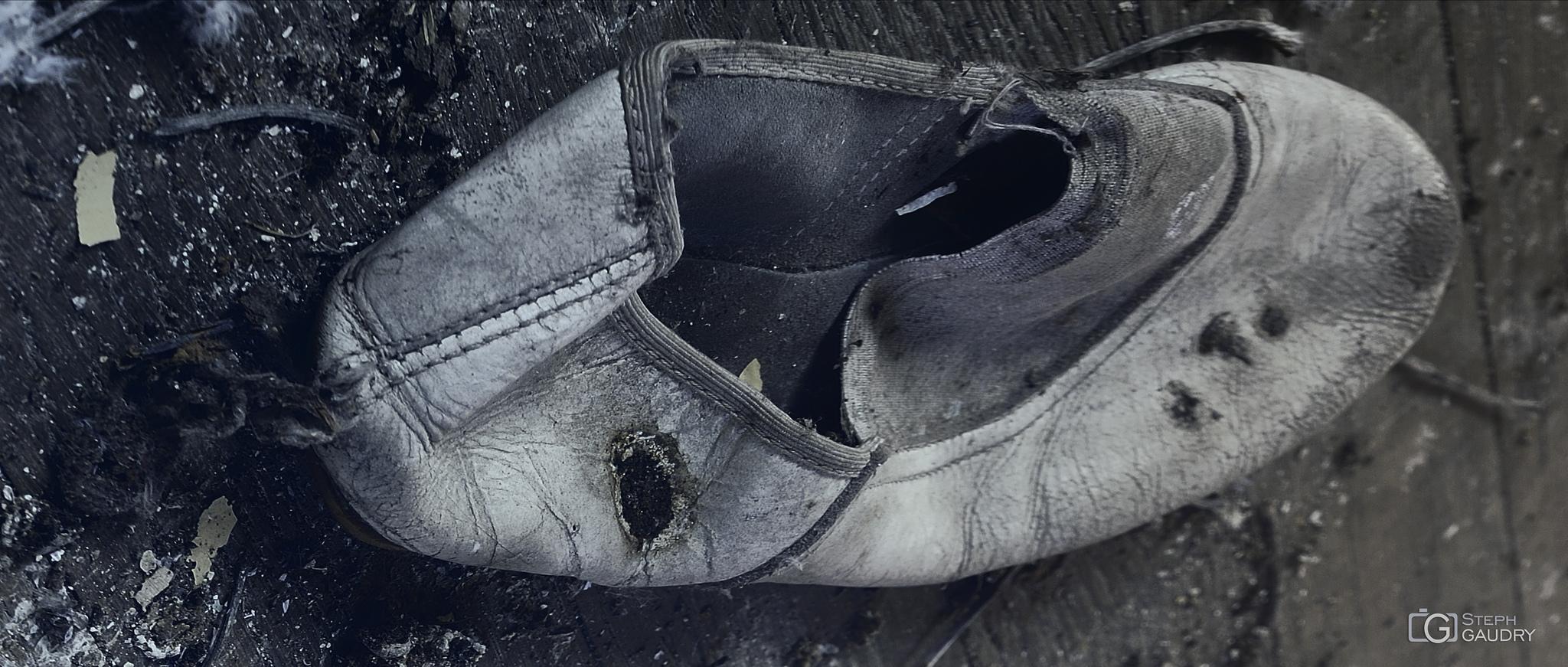 Balet du lac des cygnes, ou le chant du cygne? [Click to start slideshow]