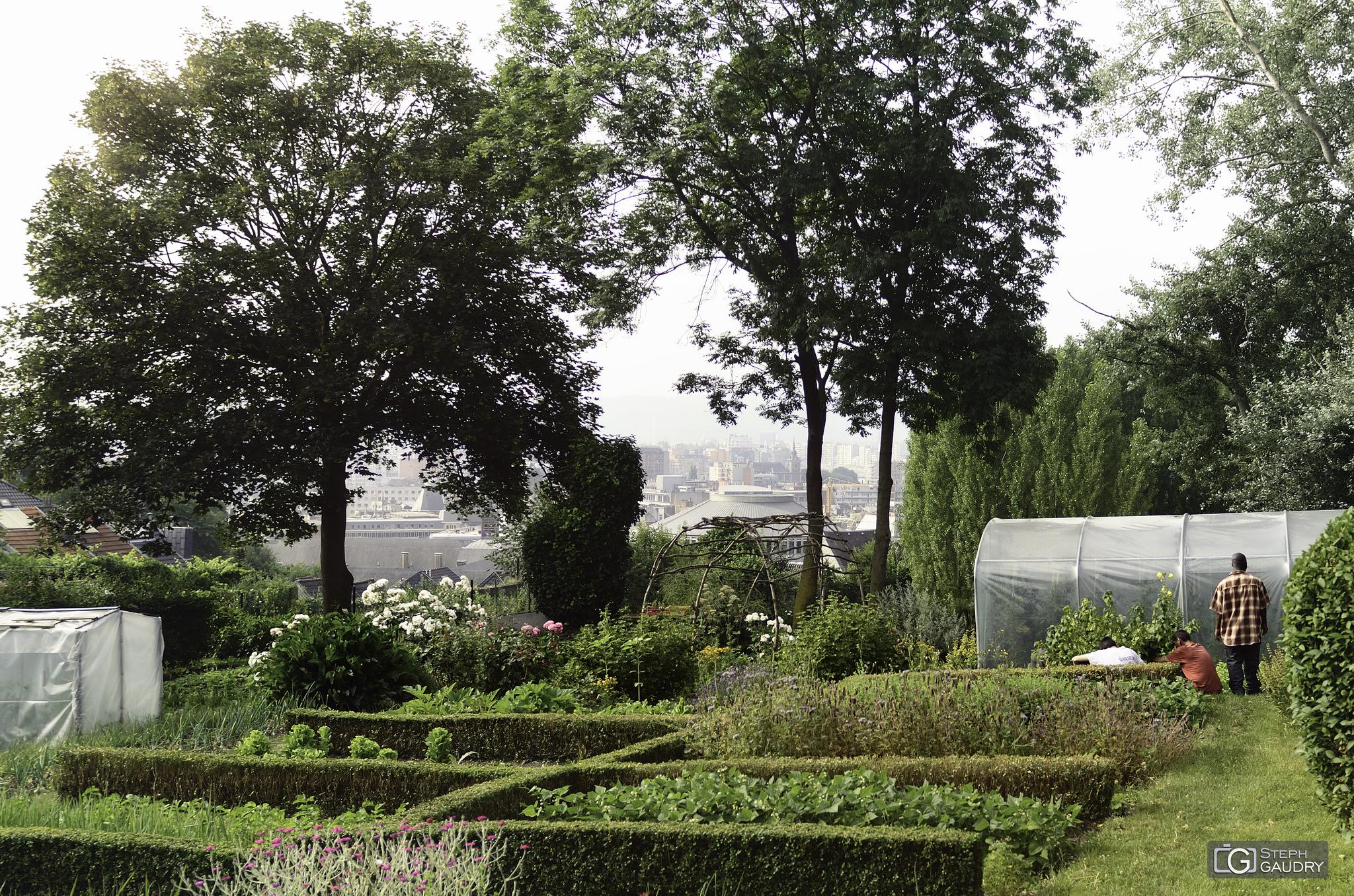 Liège, les potagers des coteaux