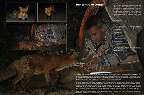 Livre 10 (2012-2017) - page 15