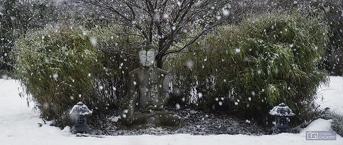 Méditation sous la neige