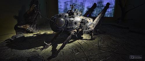 Sauterelle steampunk Dali