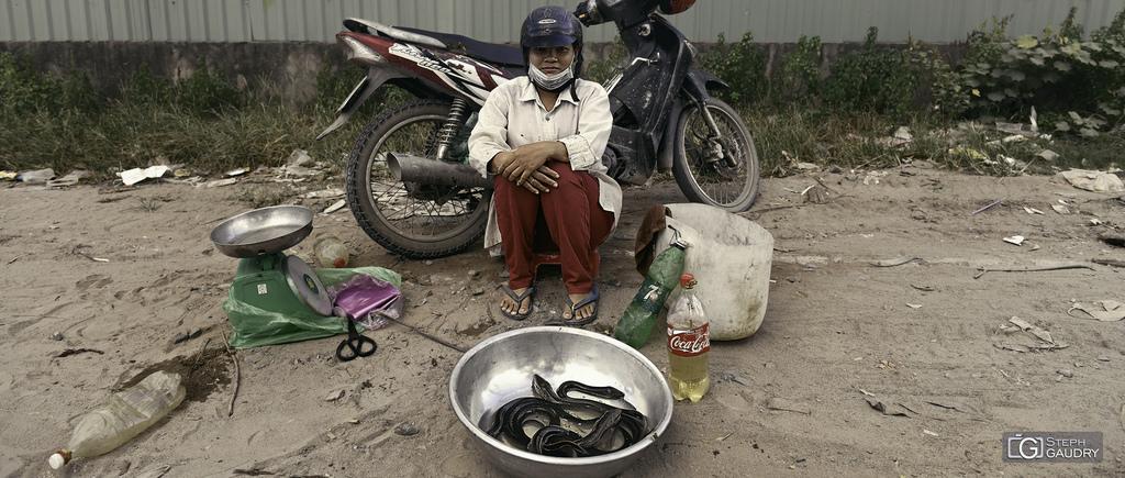 Ce soir, on mange du serpent? - 2018_04_26_120217