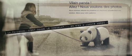 Vilain panda! Allez! Nous voulons des photos.