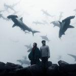 Alexander Shark - In my head my World