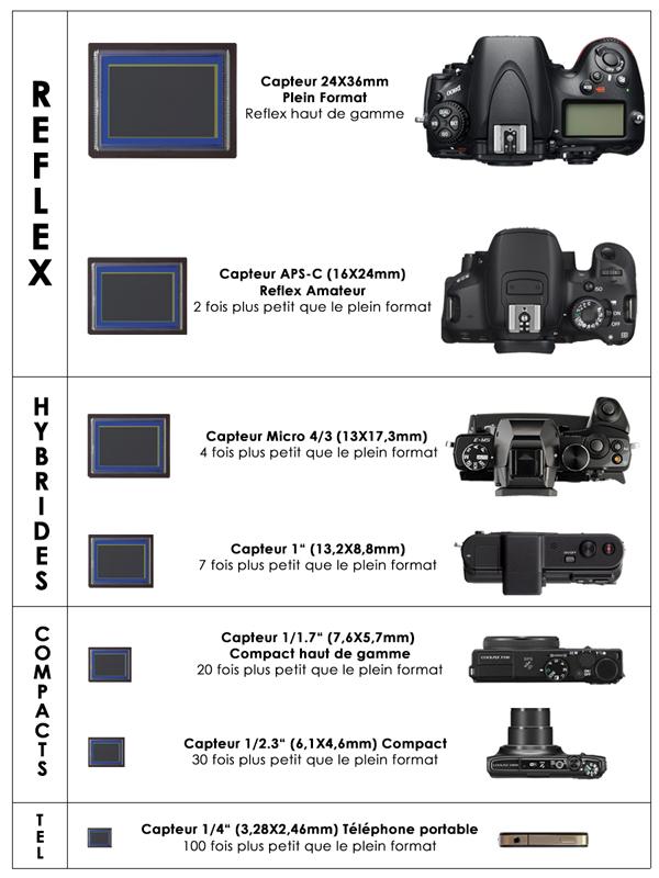 Comparatif des tailles des capteurs photo - Quel est le meilleur cuir ...