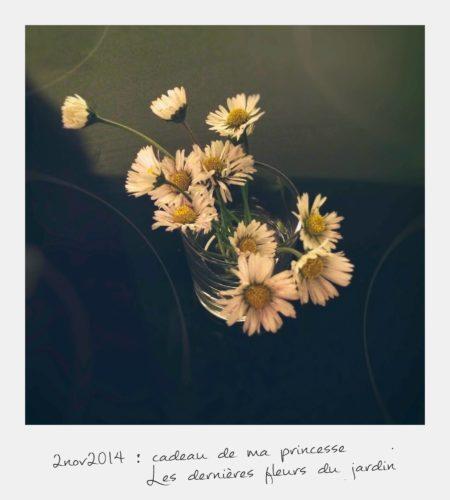 fleurs-cadeau